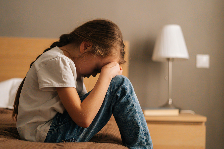 recent case addressing child sex abuse allegations in the family court